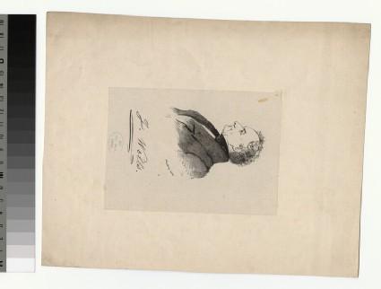 Portrait of J. Wells