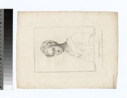 Portrait of Miss Norsa