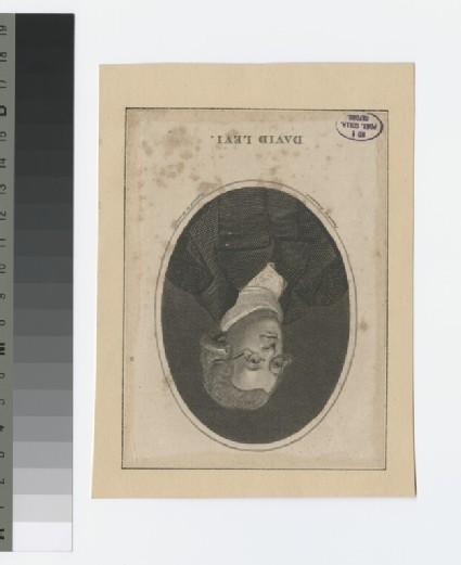 Portrait of D. Levi