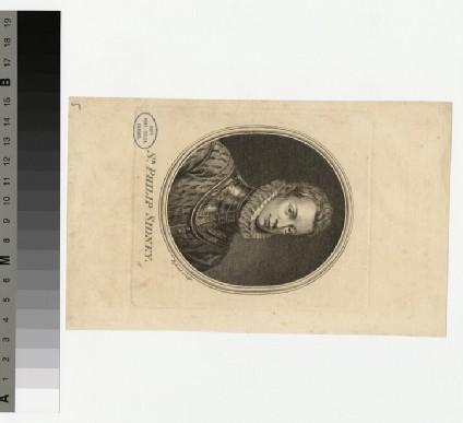 Portrait of P. Sidney