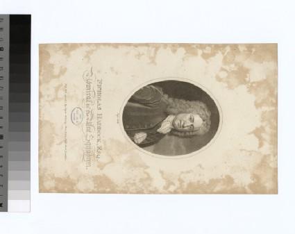 Portrait of Admiral Haddock