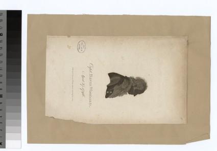 Portrait of Capt.D. Woodard
