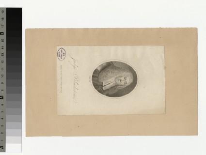 Portrait of Blackstone
