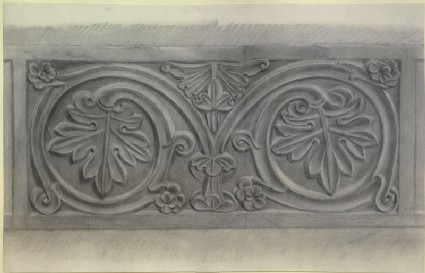 Study of a relief Vine-leaf Pattern