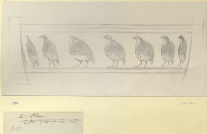 Perspective Study: Birds in Procession on a Greek Vase