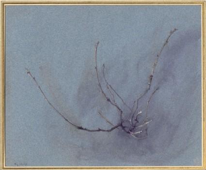 The Dryad's Waywardness: Oak Spray in Winter, seen in Front