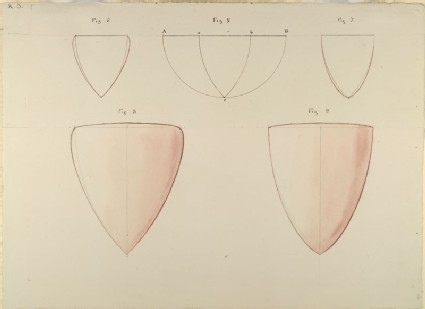 Five Diagrams showing the two Types of developed Form in the English Shield