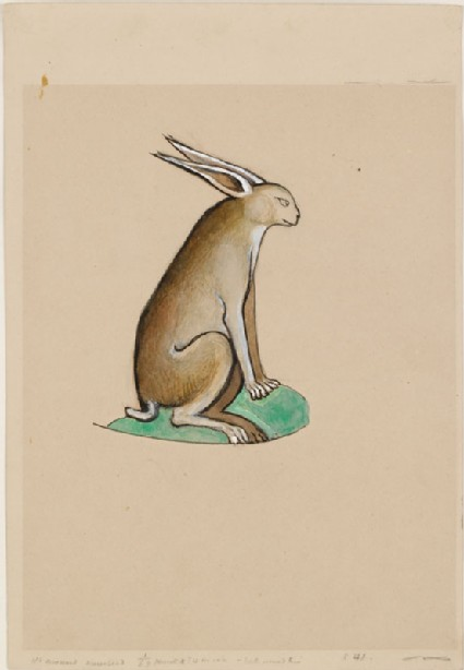 Drawing of a Hare from the Ormesby Psalter