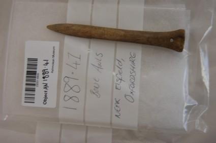 Bone needle or gouge