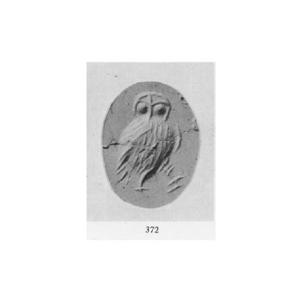 Ringstone, owl walking to the right
