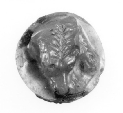 Cameo depicting the head of a sleeping hound