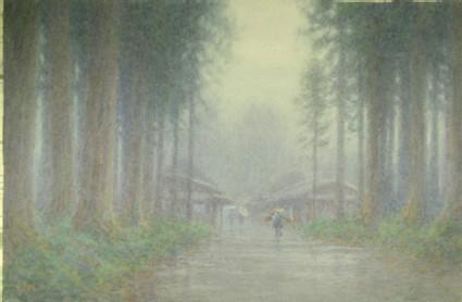 Cryptomeria avenue in mist