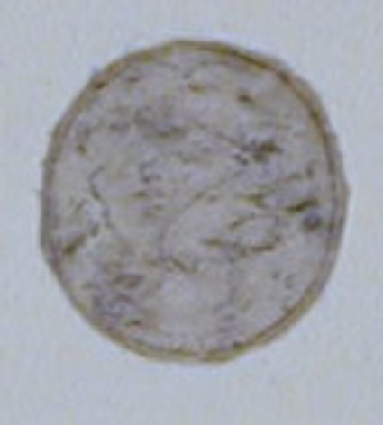 An oval design depicting an animal, possibly a stag, on a bank