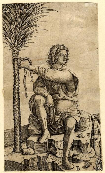 Man seated near a palm tree