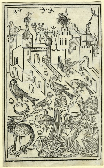 Two men surrounded by birds