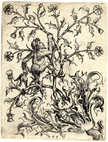 Ornamental design of thistles and a wild man