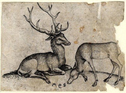 The Stag and the Hind
