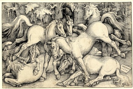 Group of seven Horses