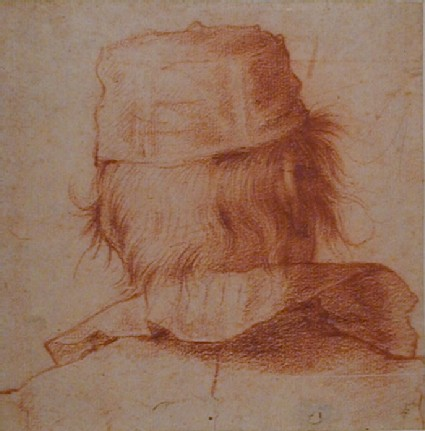 Man's Head in back View
