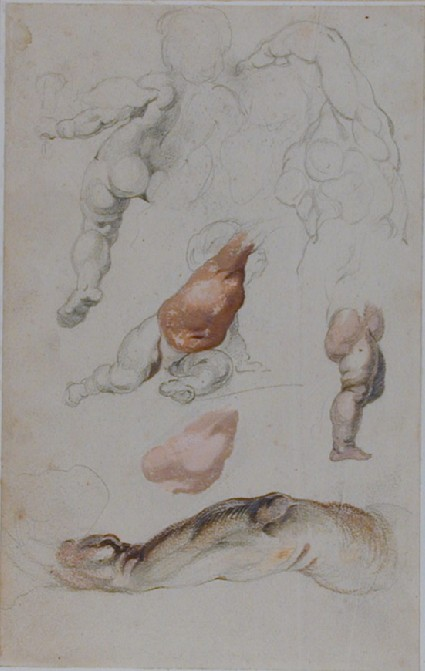 Recto: Studies of Putti, a Torso and an Arm <br />Verso: Studies for a Fountain