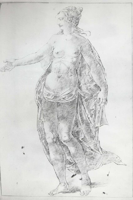 Venus facing left