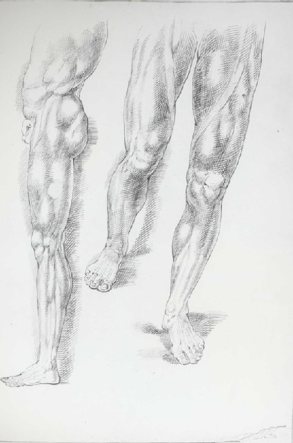 Left Leg and Torso of a Man in profile and a Study of a Man's Legs in the Act of walking