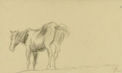 A Standing Horse, a preparatory study for an etching of a horse beside a stream