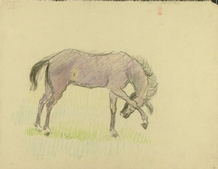 Horse with raised Foreleg, a preparatory study for the etching of the same name