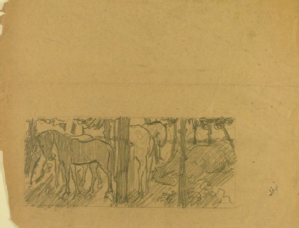 Four Horses in a Wood