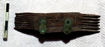 Fragment of comb