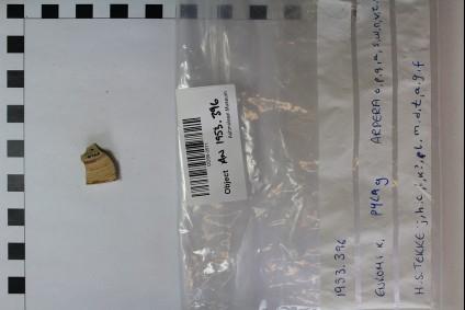 Mycenaen piriform jar or stirrup jar base fragment