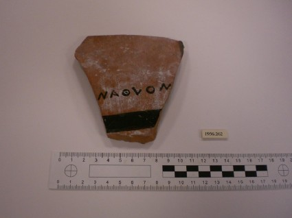 Attic black-figure pottery amphora sherd