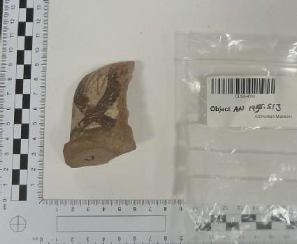 Amphora handle fragment