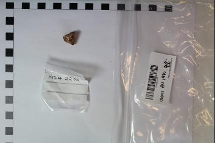 Rim fragment of bowl