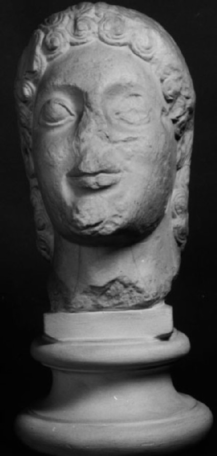 Cast of the head of a kouros