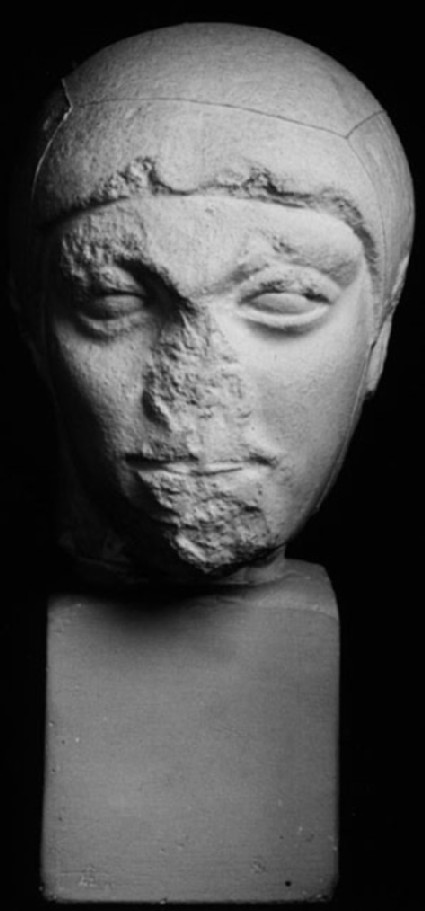 Cast of the head of a youth, from Aigina