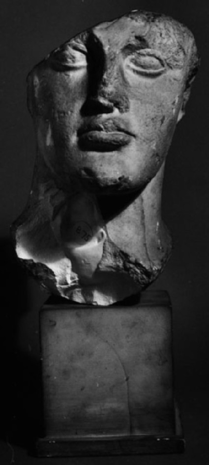 Cast of the head of a youth