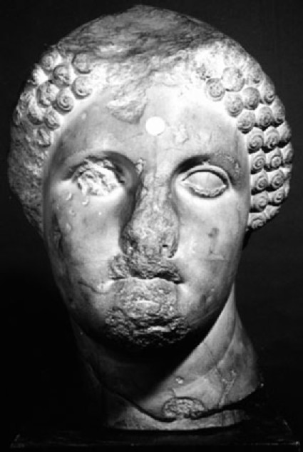 Cast of a female head from the Mausoleion, Halikarnassos
