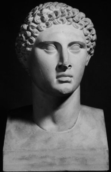 Cast of male head, possibly Ptolemy 'Apion', from Cyrene