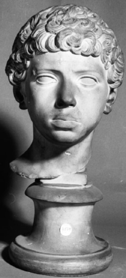 Cast of the head of a boy, from Rome