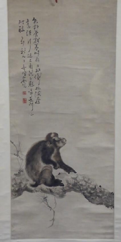 Monkey under the Moonlight