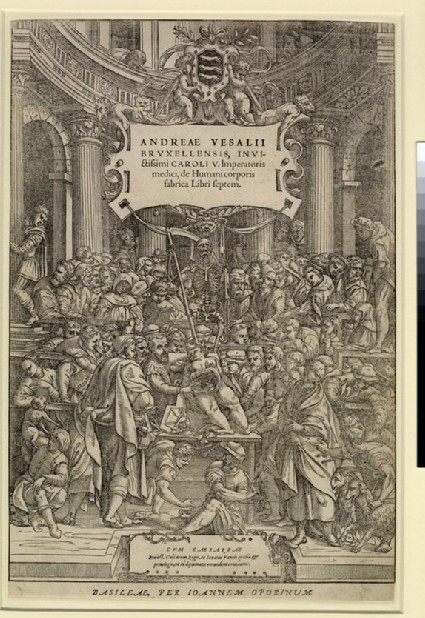 Anatomical demonstration by Andreas Vesalius in a wooden theatre