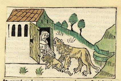 A man in a house and an animal and cub