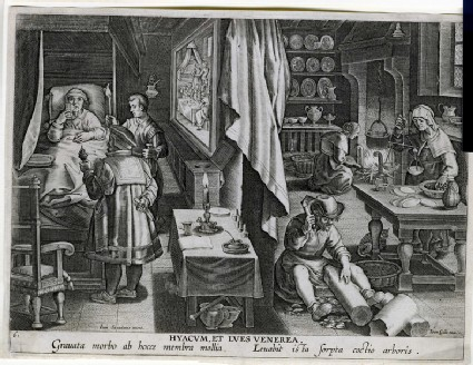 The discovery of Guaicum as a cure for venereal infection