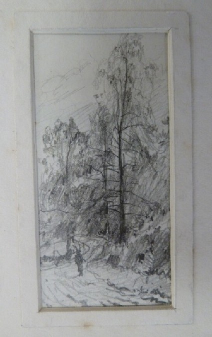 Figure on a wooded path