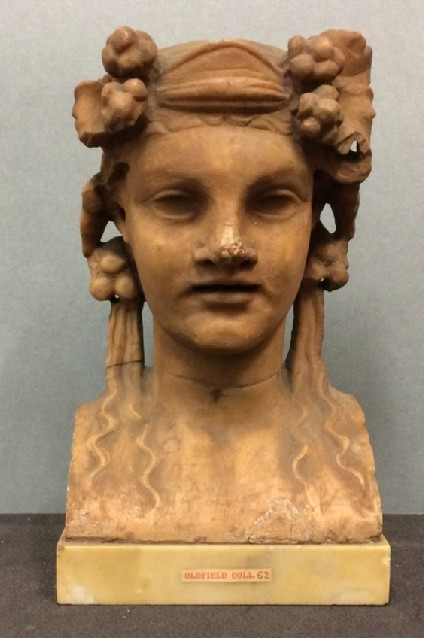 Terminal head of a maenad
