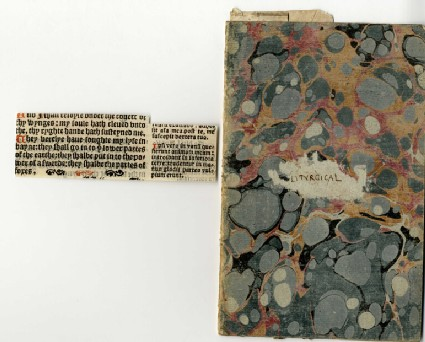 Fragments of pages from liturgical books