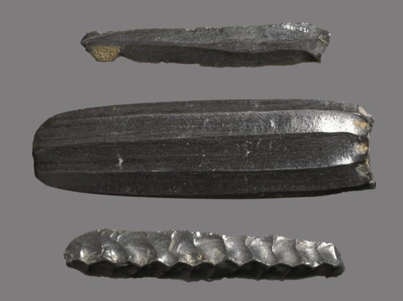 Obsidian core (AN1880.125)