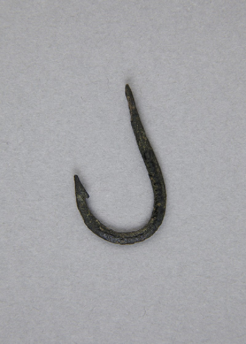 Barbed bronze fish hook (AN1884.245)