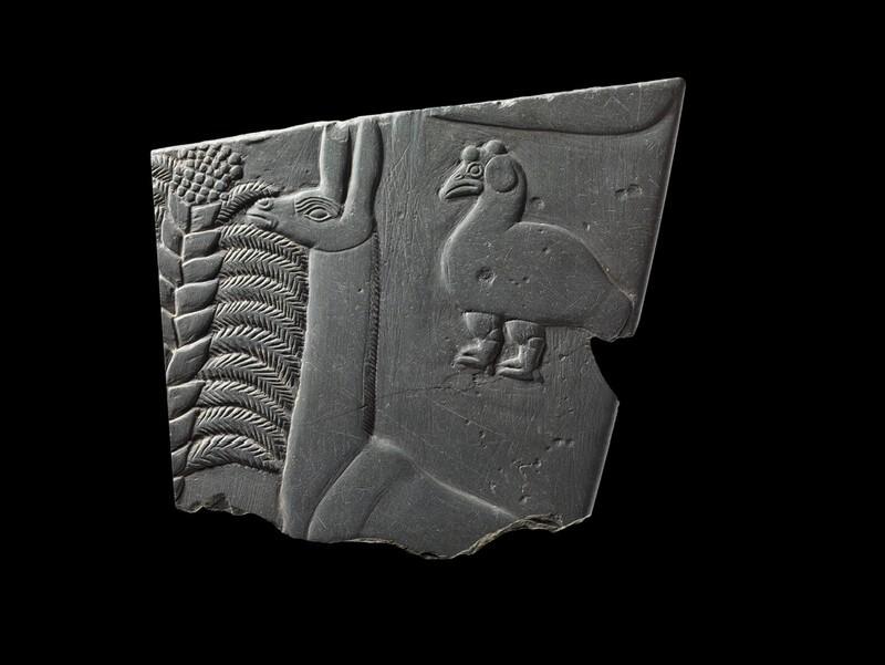 (AN1892.1171)